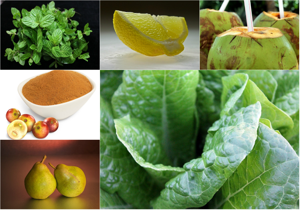 Mint Camu Camu Smoothie Ingredients